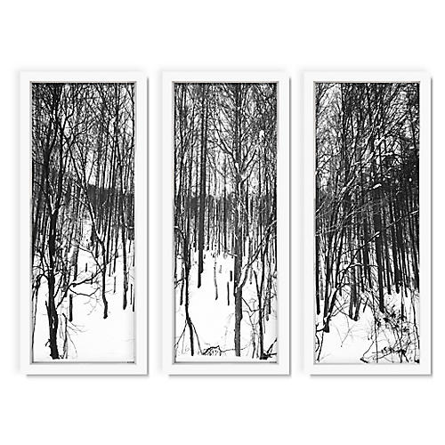 Pascal Shirley, Winter Forest I Triptych