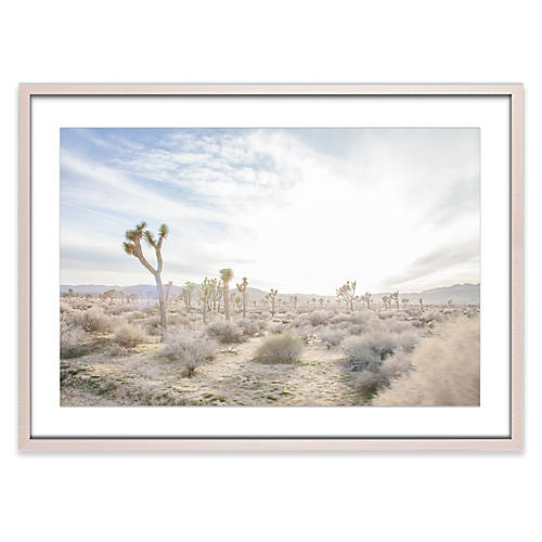 Joshua Tree 6, Amy Neunsinger