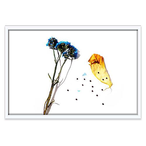 Floral I, Frank Frances