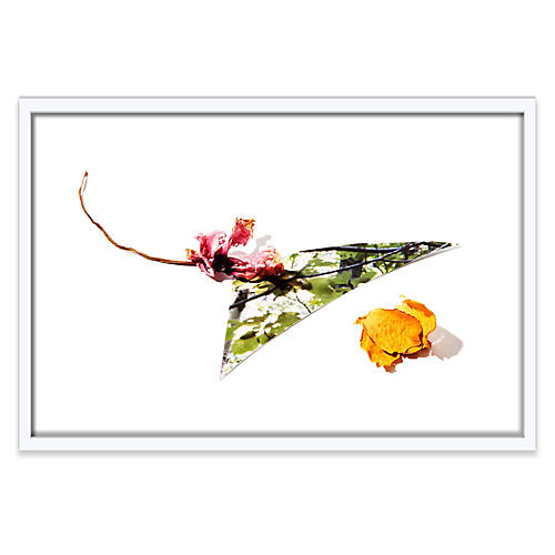 Floral II, Frank Frances