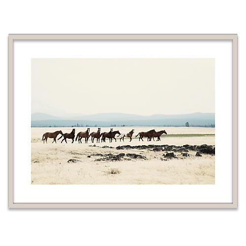 Wild Horses I Photograph