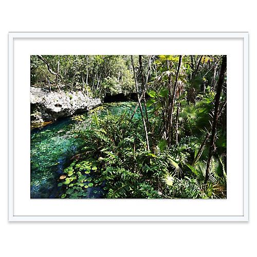 Cenote Nict-Ha, Natalie Obradovich