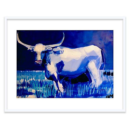 Hayley Mitchell, Blue Longhorn