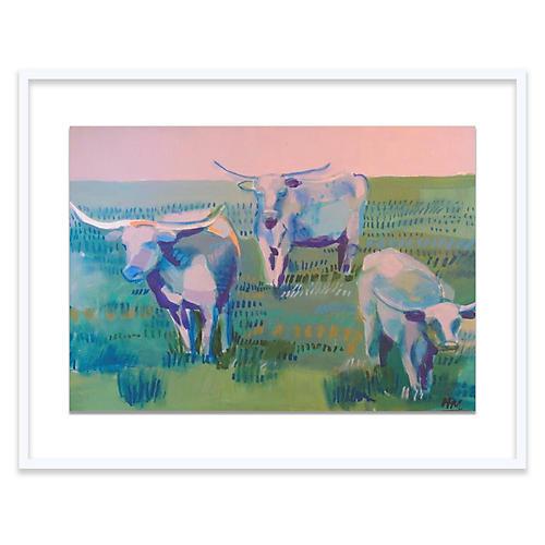 Longhorns, Hayley Mitchell