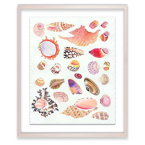 Gabby Malpas, Shells