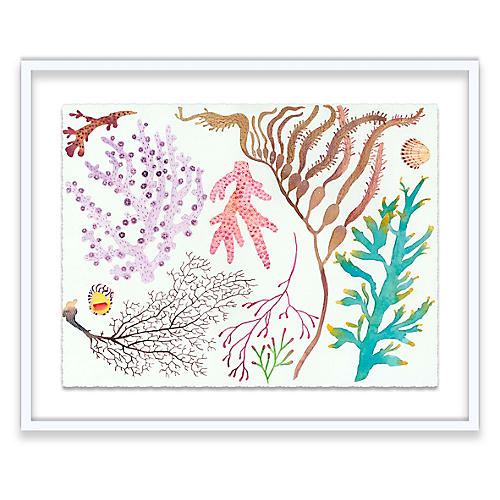 Coral Painting