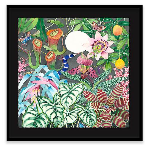 Gabby Malpas, Midnight in the Garden of Eden