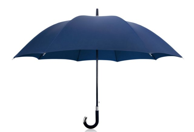 Elite Cane Umbrella, Navy