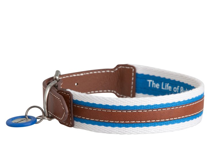 Rugby Collar, Blue