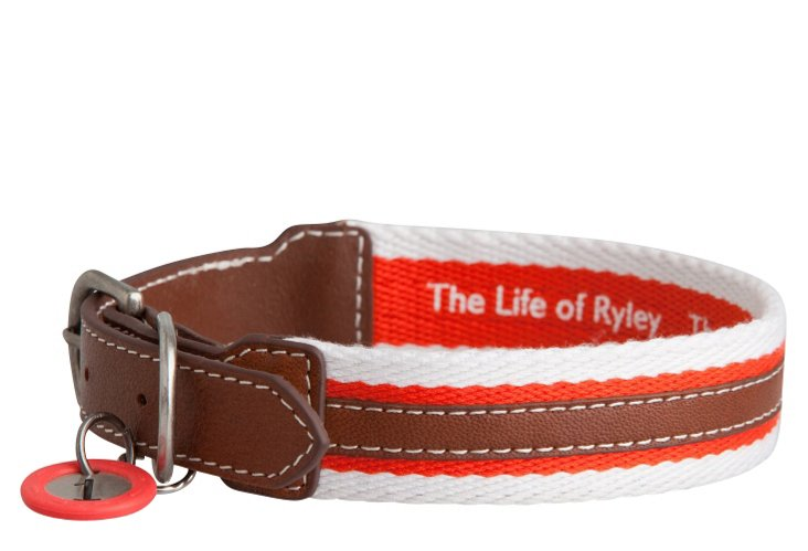 Rugby Collar, Red