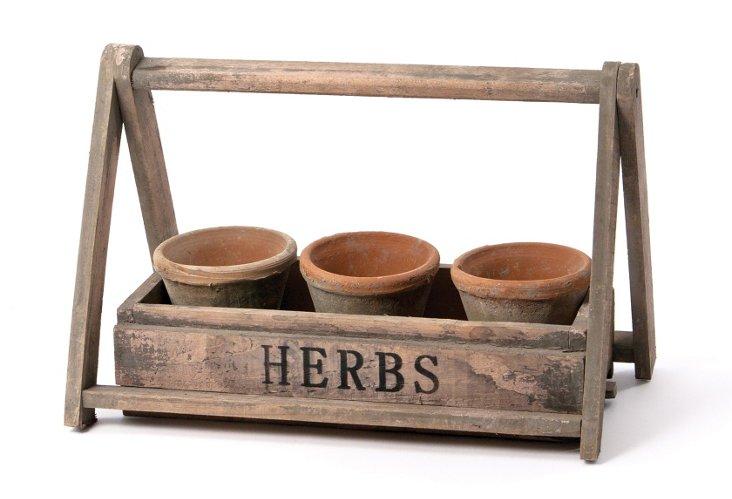"""4"""" Terracotta Planters in Wooden Basket"""