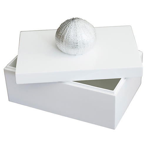 "12"" Box with Sea Urchin, White"