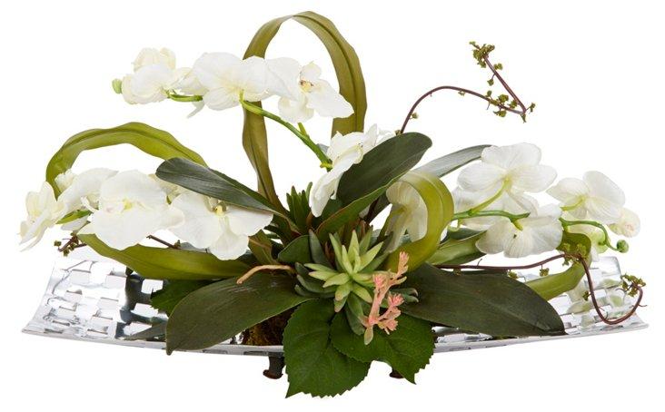 "24"" Phalaenopsis on Tray, Faux"