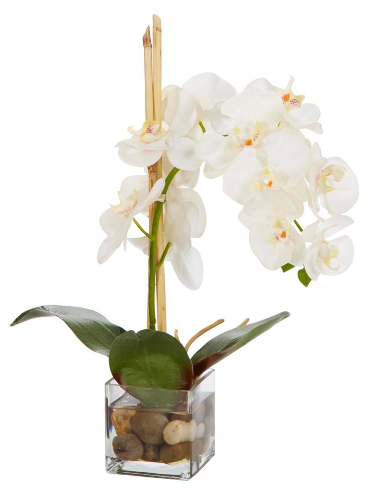 "20"" Orchid in Vase, Faux"