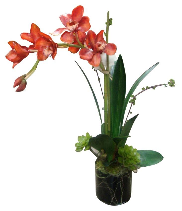 """28"""" Orchids w/ Succulent in Vase, Faux"""