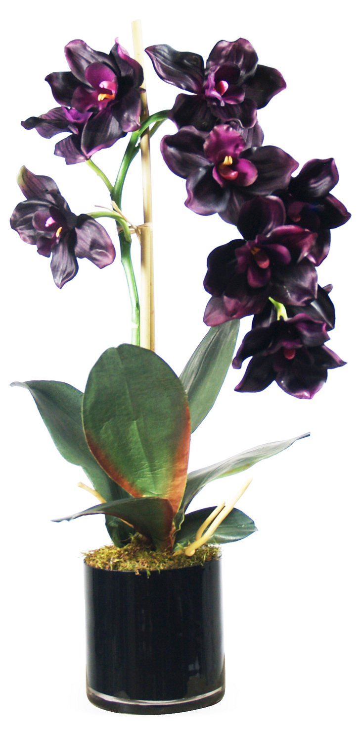 """24"""" Orchids in Glass Pot, Faux"""