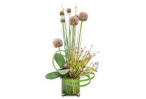 """25"""" Allium Arrangement in Planter, Faux"""