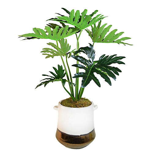 "40"" Philodendron Tree in Planter, Faux"