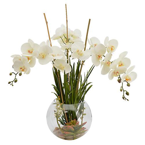 """28"""" Anson Orchid Arrangement, Faux"""