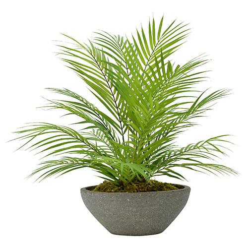 """22"""" Palm Plant, Faux"""