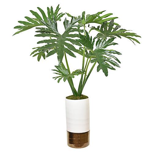 """45"""" Selloum Aloe Philodendron Plant, Faux"""