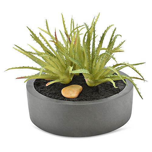 "13"" Aloe Plant, Faux"