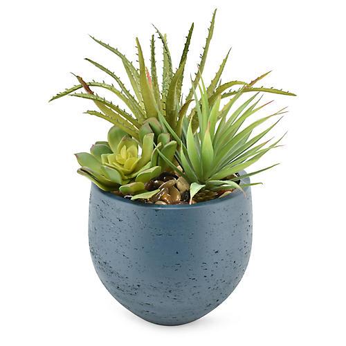 """13"""" Aloe & Cactus Arrangement, Faux"""