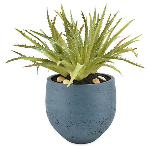 "14"" Aloe Plant, Faux"