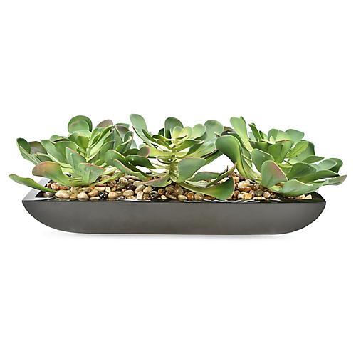 """23"""" Echeveria Cactus Plant, Faux"""