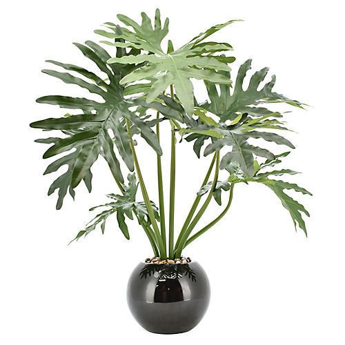 "36"" Philodendron & Rock Tree, Faux"