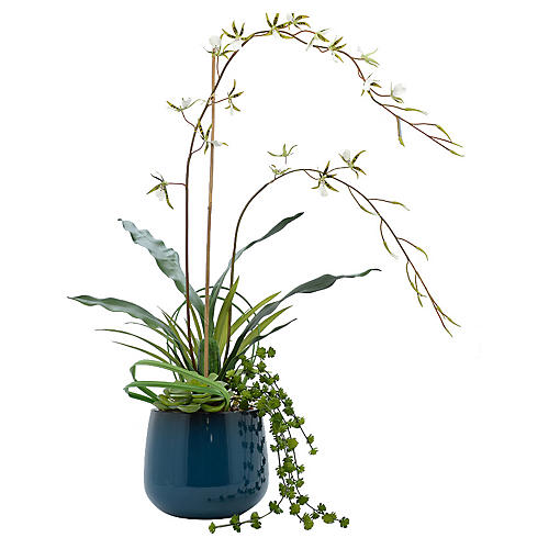 "41"" Spider Orchid Arrangement, Faux"