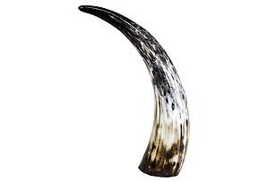 "16"" Decorative Cow Horn, Multi*"