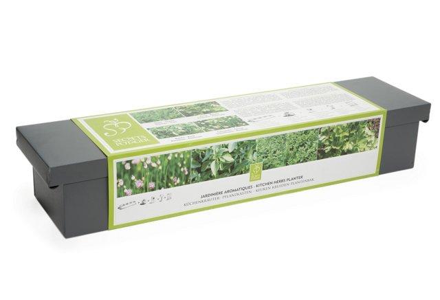 Kitchen Herbs Planter