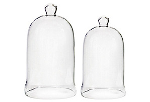 Asst. of 2 Bell-Shape Glass Domes