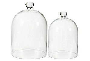 Asst. of 2 Rounded Glass Domes