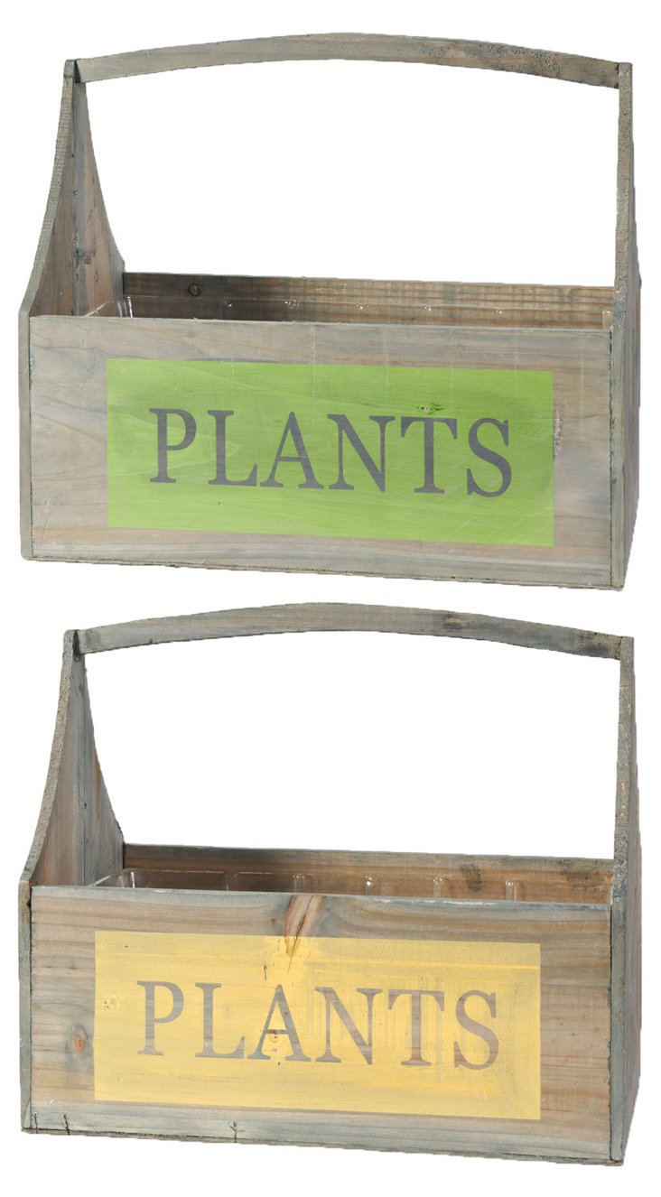 "S/2 ""Plants"" Boxes w/ Handles, Small"