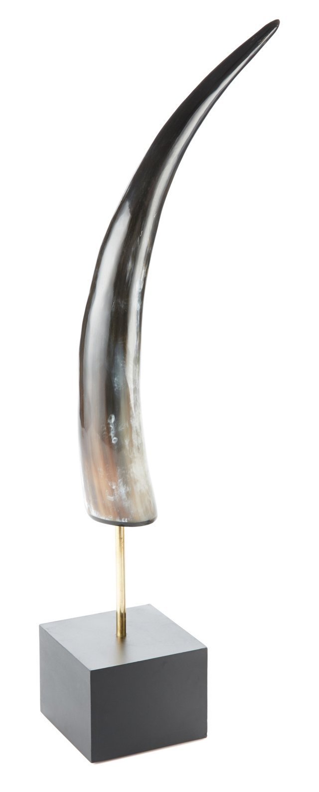 "21"" Polished Horn Tusk, Brown"