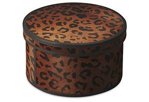 """12"""" Caolan Storage Box, Brown"""