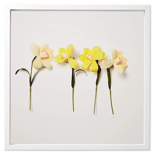 Dawn Wolfe, Spring Daffodils