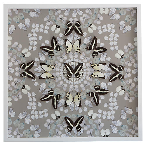 Dawn Wolfe, Butterfly Construction: Putty Gray