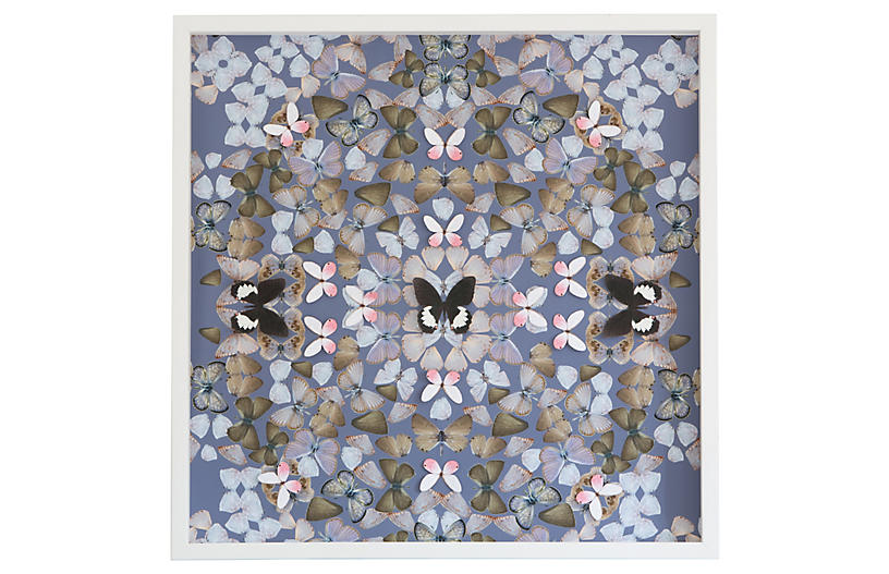 Dawn Wolfe, Butterfly Construction: Periwinkle
