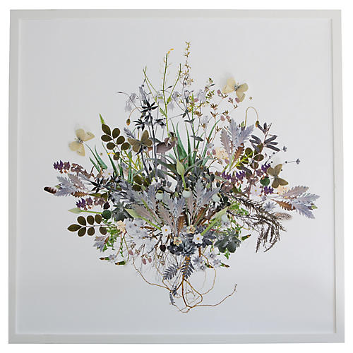 3D Plant Montage: Spring, Dawn Wolfe