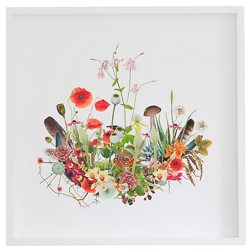 Dawn Wolfe, 3D Plant Montage: Poppies