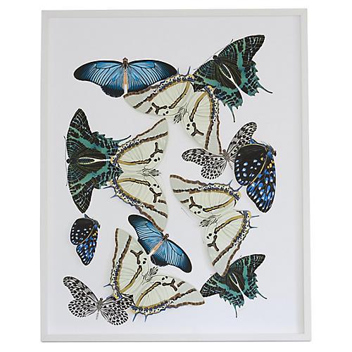 Moths & Butterflies: Blue/Green, Dawn Wolfe