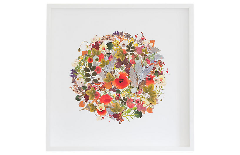 Dawn Wolfe, 3D Plant Montage: Summer Circle