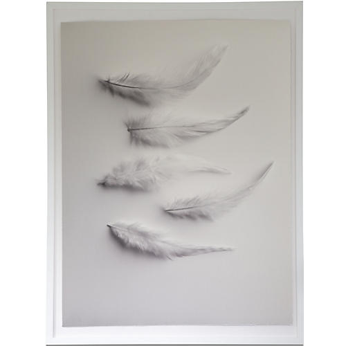 Dawn Wolfe, Down Feathers