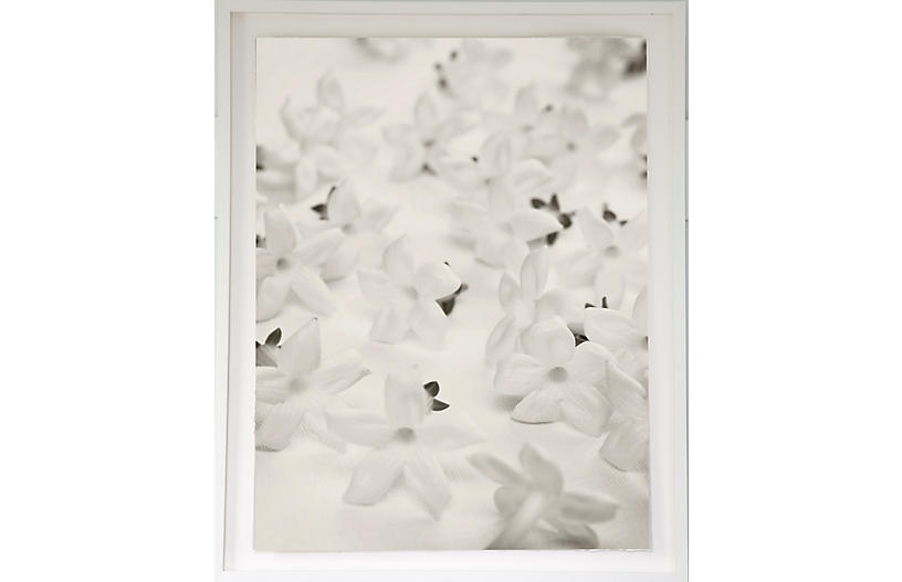 Dawn Wolfe, White Blossoms on Linen