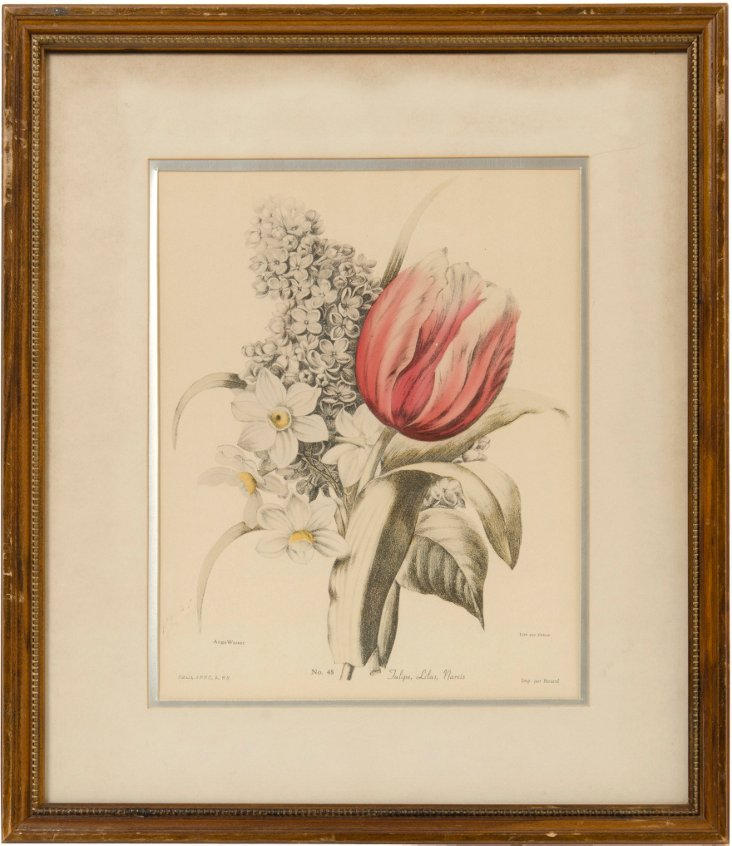 Framed Angel Wasset Flower Print