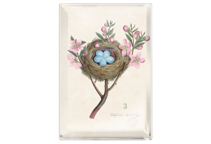 Nest Hanging Glass Tray