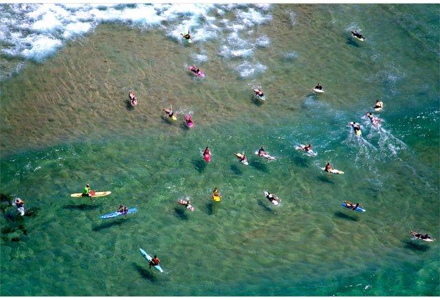 Maroubra Surfers, Sydney Oversize